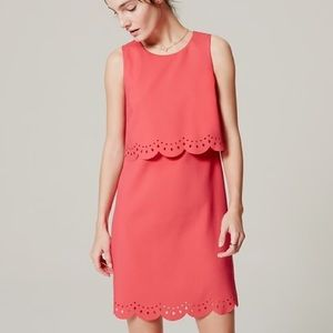 LOFT | Pink Laser Cut Tiered Shift Dress 0 Petite